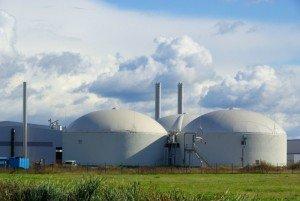 centrale-biomasse serbia investimenti