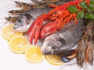ptc pesce smederevo produzione pesce e confezionamento